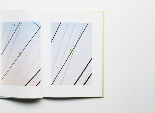 水谷吉法: TOKYO PARROTS