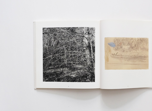 Lee friedlander & Pierre Bonnard: Photographs & Drawings