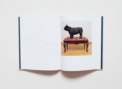 Maarten Wetsema: Hond Dog