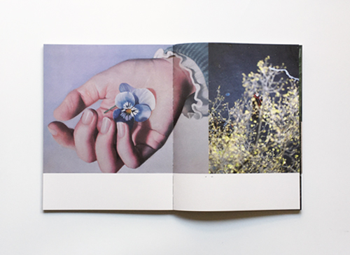 A Magazine No.21 Curated by Lucie and Luke Meier