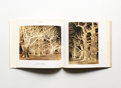 Botanica - Photographies de vegetaux aux XIXe et XXe siecles