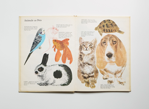 Vera Croxford: Animals Everywhere