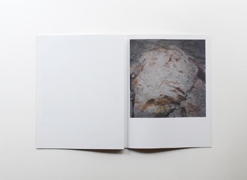 Anne Schwalbe: Vulkan oder Stein