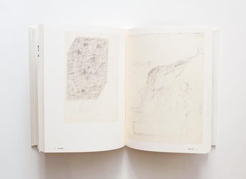 Joseph Beuys: Zeichnungen zu Codices Madrid von Leonardo da Vinci
