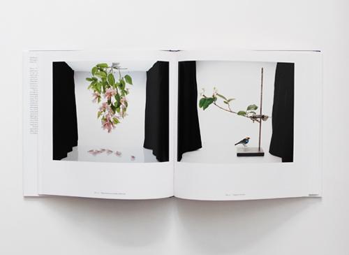 Sanna Kannisto: Fieldwork