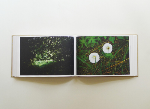 herman de vries & susanne de vies: die wiese・the meadow|eschenau 1986-2013