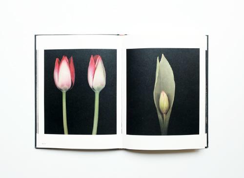 Joyce Tenneson: Intimacy