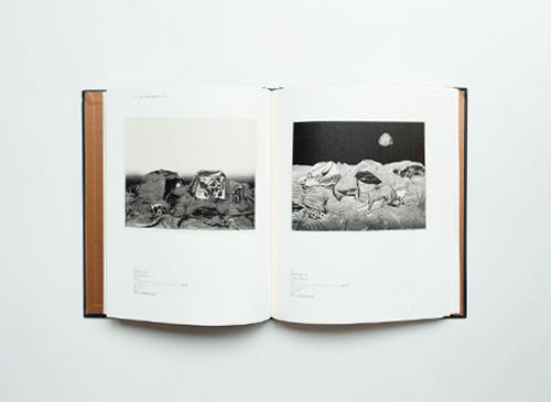 中林忠良 銅版画 — すべて腐らないものはない