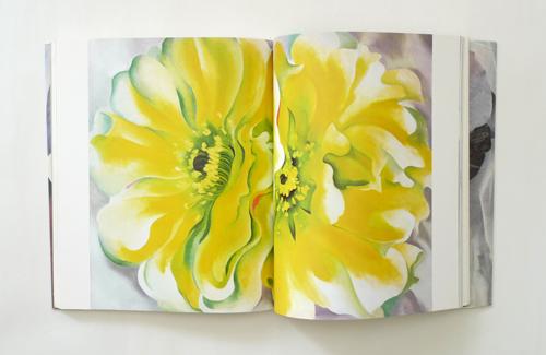 O'Keeffe One hundred flowers 3