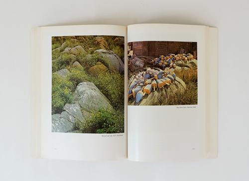 Eliot Porter: Summer Island