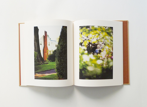 Terri Weifenbach: Between Maple and Chestnut