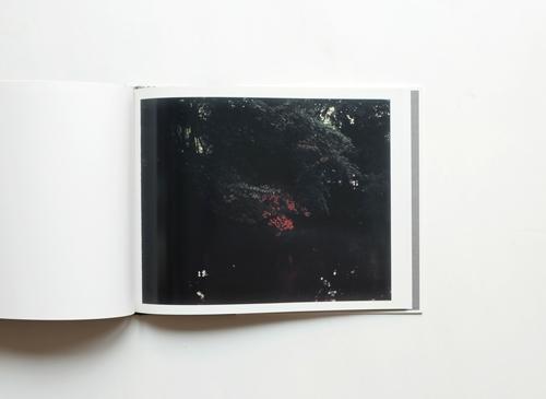 TORII  Risaku Suzuki