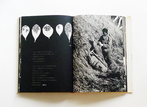 田淵行男写真集 山の意匠